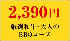 2,390円厳選和牛・大人のBBQコース